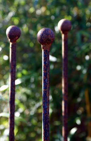 Metallic Garden Rusted Iron Plant Stakes