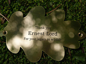 engraved brass oak leaf plaque